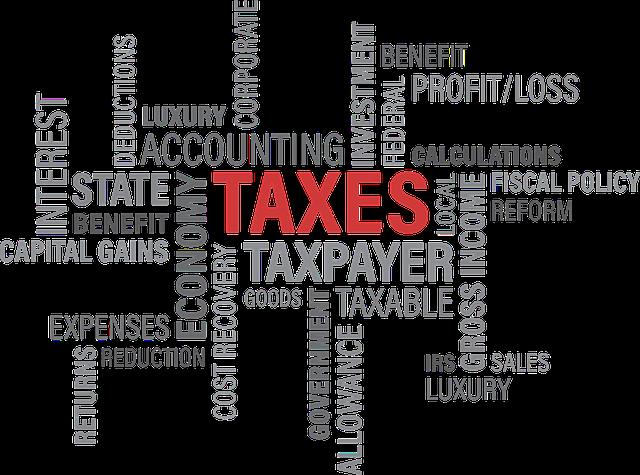 daňové výrazy