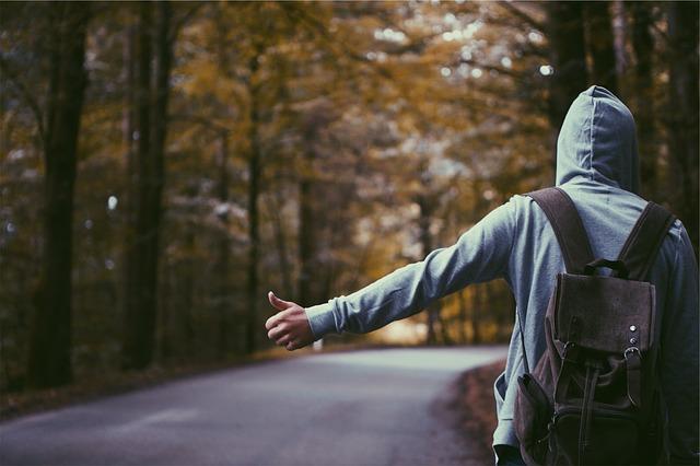 stopař u lesa.jpg